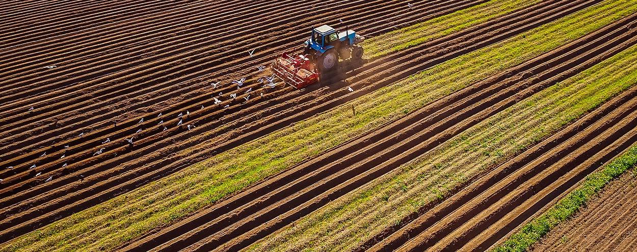 landwirtschaftlichermitarbeiter1